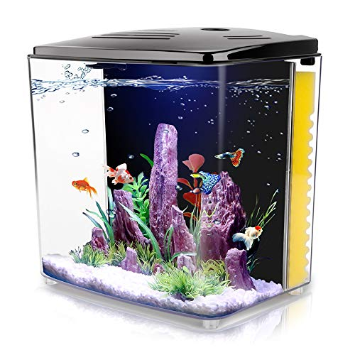 FREESEA 1.4 Gallon Aquarium Starter Kits, Aquariums Square Betta Fish Tank with LED