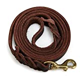 Leather Leash Review and Comparison