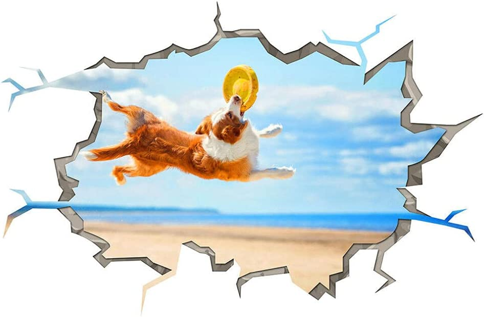 ORMMZR NEW Wall Stickers Dog Great interest Puppy Animal Beach Fetch