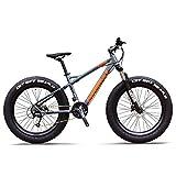 27-Gang-Mountainbikes, Profi 26 Zoll Adult Fat Tire Hardtail Mountainbike, Alurahmen Vorderachsfederung All Terrain Fahrrad, D FDWFN