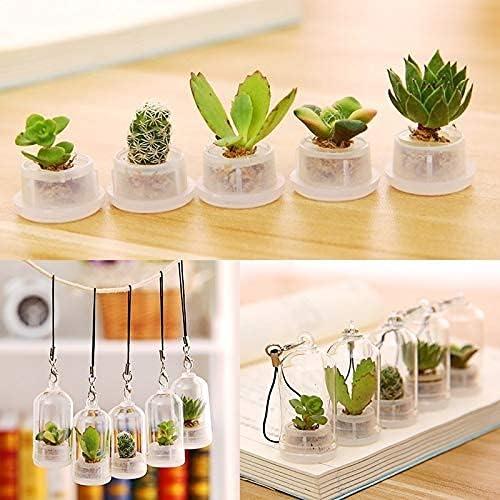 FSHDWC Challenge the lowest price 1Pcs Succulent Plant Keychains Bonsai Selling rankings Flower Gre Pot Mini