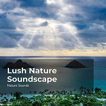 Lush Nature Soundscape