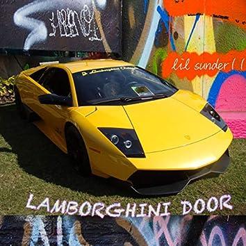 Lamborghini Door