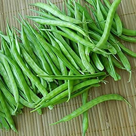 Elwyn Max 54% OFF Cluster Bean Seeds Vegetable Challenge the lowest price of Japan