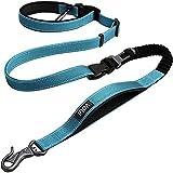 Fida Correa para perros, 1,4 m ~ 2,1 m, 6 en 1, multifunción, con cinturón abdominal ligero, para correr y montar en bicicleta, con cinturón ajustable (azul)