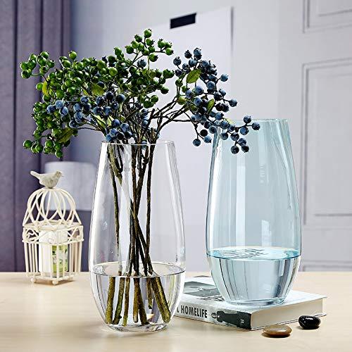 Hezeyang Dinosaurier-Ei Modellierblume europäische farbige Glasvase transparent modern minimalistisch kreative Vase, Transparente Farbe, 27cm*10cm