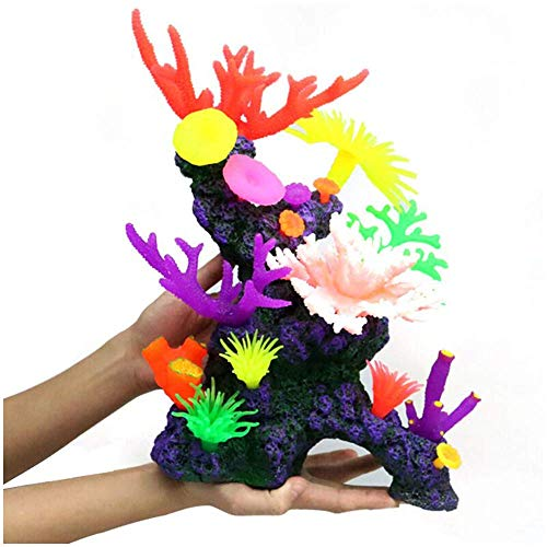 Corales Para Peceras Y Decoración Baratos