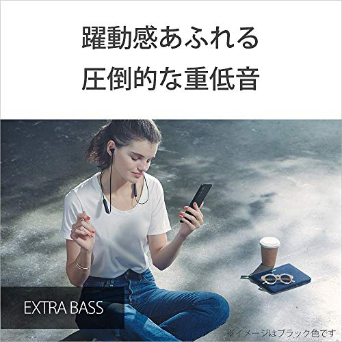 SONY(ソニー)『WI-XB400』
