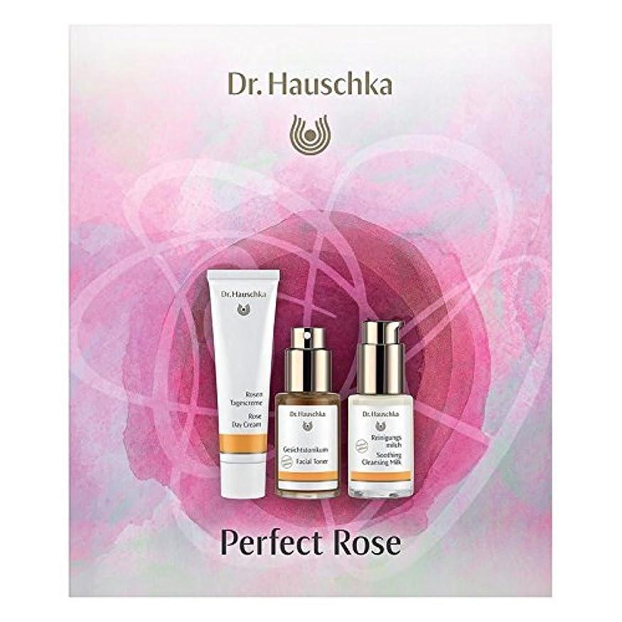 魅惑的なアルファベット順タービンハウシュカ完璧なバラ x2 - Dr. Hauschka Perfect Rose (Pack of 2) [並行輸入品]