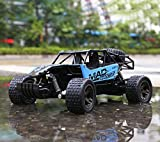 FITMAKER RC Cars, All Terrain Remote Control High-Speed Telecar, Offroad 2.4Ghz 2WD Remote Control Monster Truck, for Kids and Adults(Blue)