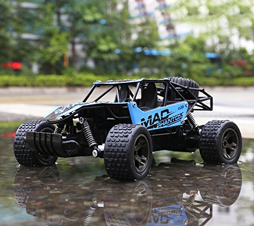RC Cars, All Terrain Remote Control High-Speed CarxFF0C;Offroad 2.4Ghz 2WD Remote Control Monster Truck, for Kids and Adults(Blue)