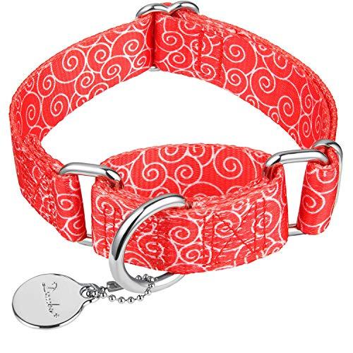 Dazzber Martingale Halsbänder für Hunde, kein Ziehen, Anti-Flucht, Haustier-Halsband, strapazierfähig für mittelgroße und große Hunde, verstellbar von 43,2 cm bis 63,3 cm, Rot, verheißungsvolle Wolke