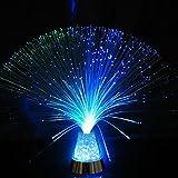 Lampe fibre optique multicolore, Lampe ambiance Tubes Lumineuses Lampe de Table Veilleuse Décoration pour Chambre Disco Soirée Anniversaire