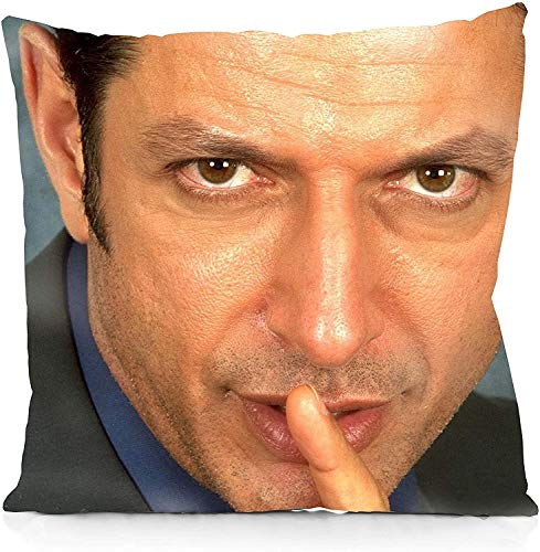 Marrine The Same Photo of Jeff Goldblum Every Day Square Pillowcase Both Sides Print Zipper Throw Pillows Covers 18x18 Inches