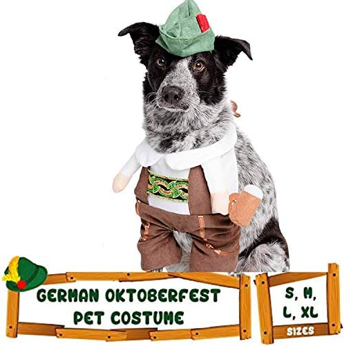 Dog costume carrying gift