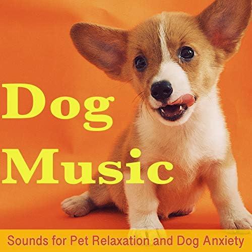 Relaxmydog & Dog Music Dreams