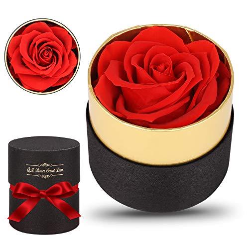 Mitening Ewige Rosen Box, Infinity Rose, Echte Rosen, 1 Stück Rosen Die Ewig Halten Echte Rosen in Box Haltbar für Valentinstag, Geburtstag, Hochzeit, Muttertag, Jubiläum, Weihnachtstag - Rot Rose