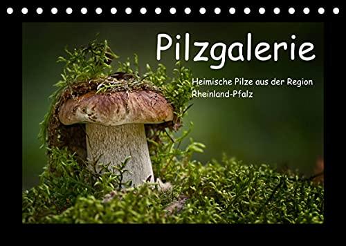 Pilzgalerie - Heimische Pilze aus der Region Rheinland-Pfalz (Tischkalender 2022 DIN A5 quer)