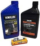 YAMAHA F2.5 F4 2005+ Oil Change 4M Yamalube 10W30 FC...
