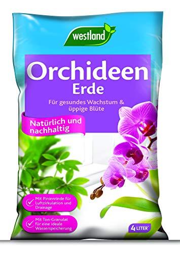 Westland Orchideenerde, Blumenerde, Granulate und Substrate, 733650, Tonfarben, 4 L