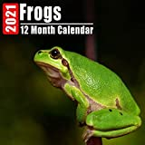 Calendar 2021 Frogs: Cute Frog Photos Monthly Mini Calendar With Inspirational Quotes each Month