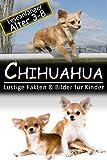 Chihuahua: Lustige Fakten & Bilder für Kinder, Leseanfänger Alter 3-8 (German Edition)