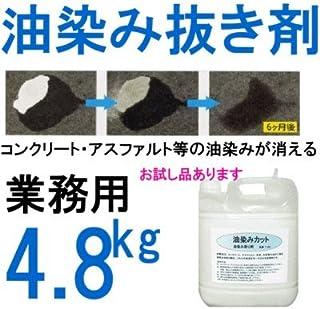 エコエスト コンクリート、アスファルト等用油染み抜き剤 油染みカット 4.8kg