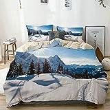 Juego de funda nórdica beige, paisaje de invierno panorámico en una montaña cubierta de nieve con clima soleado y fotos de árboles, juego de cama decorativo de 3 piezas con 2 fundas de almohada, fácil
