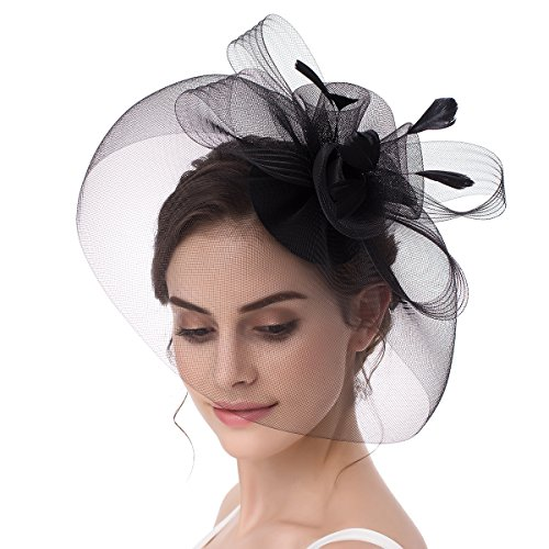 Abaowedding Feather Fascinator Cocktail Party Hair Clip Pillbox Hat Black TS005