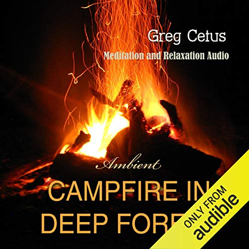 Campfire in Deep Forest cover art