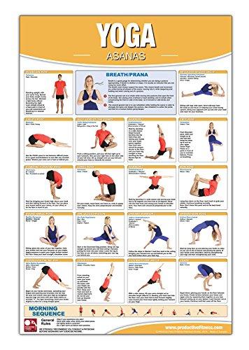 Yoga Asana Poster Chart Laminated Yog Buy Online In Fiji At Desertcart