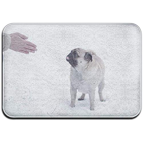 N/A Nette Smart Mops Hund Outdoor Gummimatte Vordertürmatten Veranda Garage Large Flow Slip Entry Teppich
