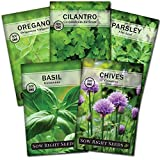 Sow Right Seeds - Herb Garden Seed Collection - Basil, Chives, Cilantro, Parsley, and Oregano Seeds for Planting; 5 Individual Packets