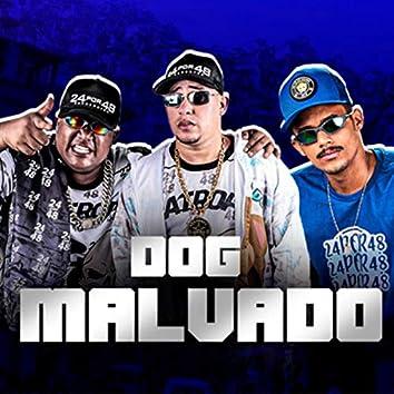 Dog Malvado
