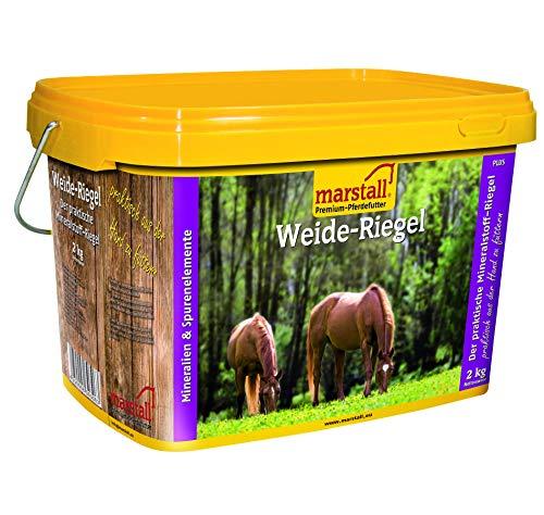 marstall Premium-Pferdefutter Weide-Riegel -saisonal, 1er Pack (1 x 2 kilograms)