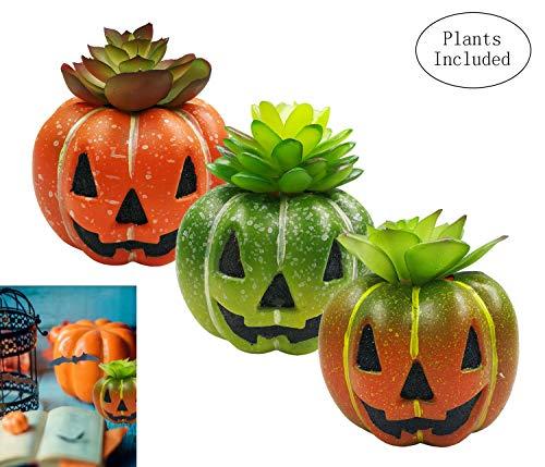 JIUCHEN Halloween Decoratieve kunstmatige vetplanten, 3 stuks, met pompoen pot, mini kunststof, namaak, groene plant, voor thuis, kantoor, balkon, decoratief