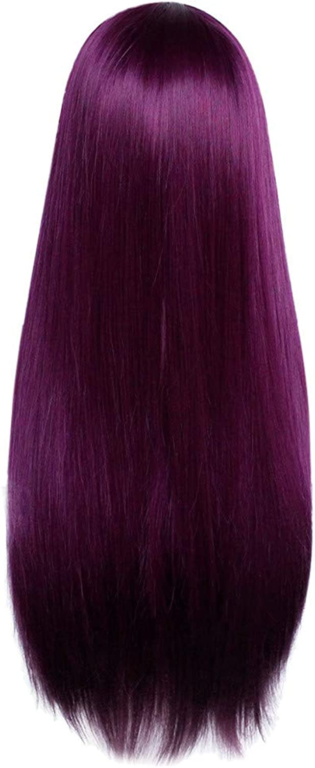 Iusun Long Straight Wigs,24'' Women's Full Front Hair Heat Resistant Synthetic Wigs Lace Hair Cosplay Costume Wigs Daily Party Anime Hair Wig High Temperature Fiber