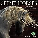 Spirit Horses 2021 Wall Calendar