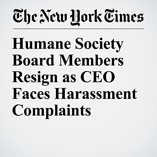 Humane Society Board Members Resign as CEO Faces Harassment Complaints copertina