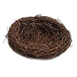 Baoblaze Rattan Vogelnest Geflechte Vine Nest Nesteinleger Feiertags Deko -
