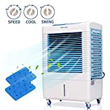 DUOLANG 2647 CFM Indoor Outdoor Evaporative Air Cooler - 3...