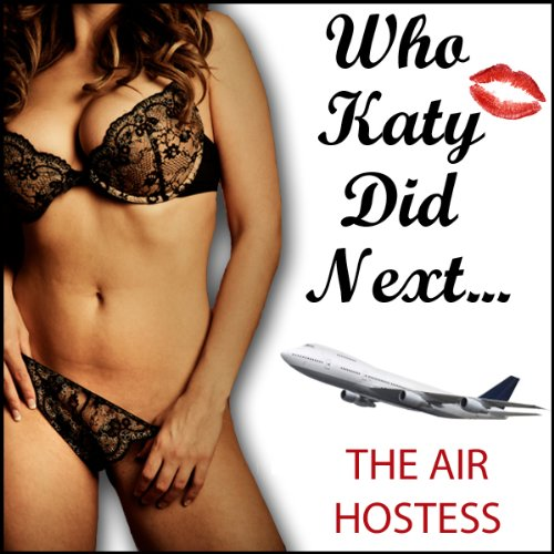 The Air Hostess cover art