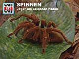 Spinnen - Jäger am seidenen Faden