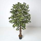 HOMESCAPES Arbre Artificiel Ficus Benjamina, Plante d'intérieur Figuier pleureur en Pot, avec Tronc en Bois véritable, Feuilles Vertes 180 cm