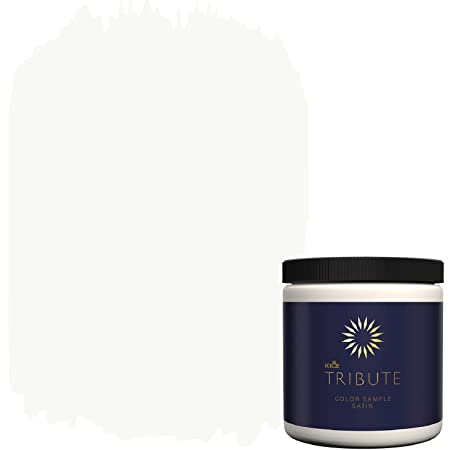 Amazon Com Kilz Tribute Interior Satin Paint Primer In One 8 Ounce Sample Misty Morning Tb 51 Home Improvement