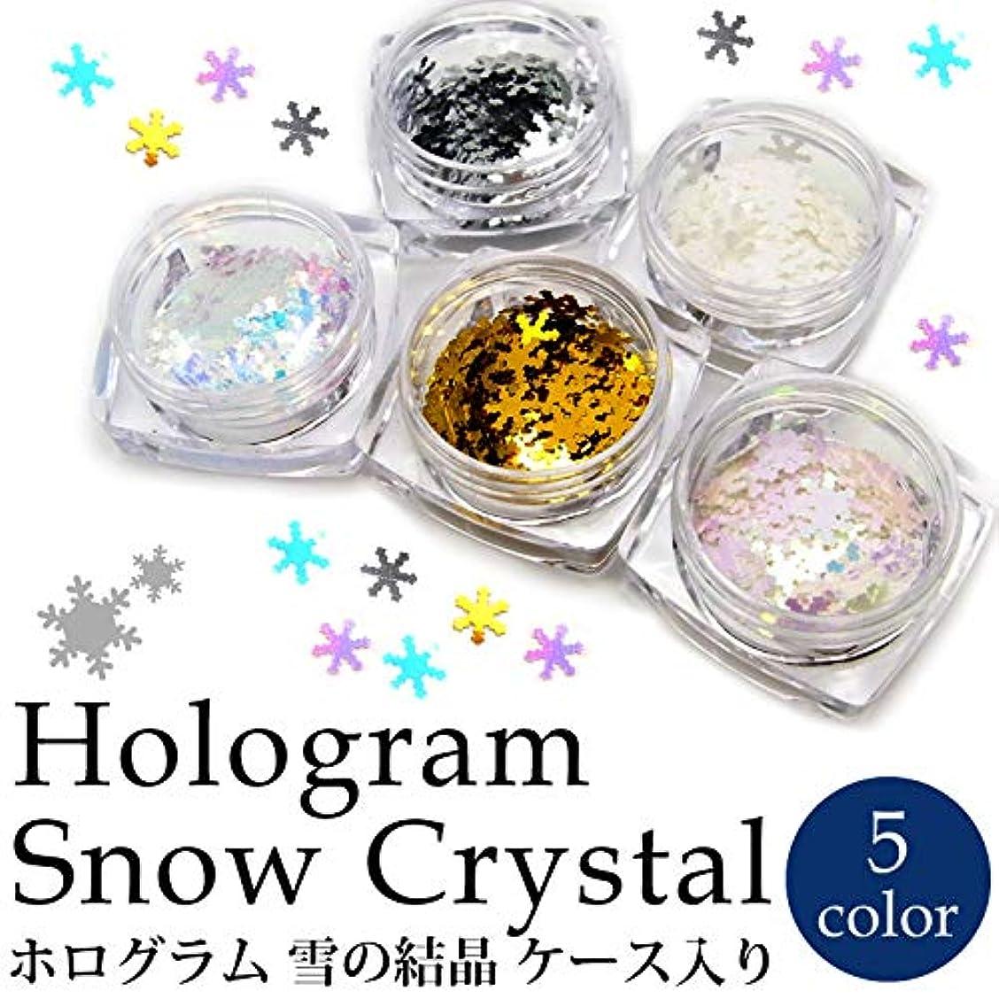 代表宿題をするホログラム 雪の結晶 各種 ケース入り (5.ホワイトオーロラピンク)