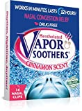 Vapor Soothers Nasal Dilator Clips, Instant Nasal Congestion Relief, Cinnamon, 14 Count, Drug-Free