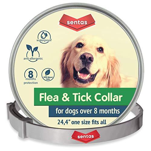 Advantix - Spot On per cani oltre 4 Kg fino a 10 Kg, 4 pipette da 1.0 ml, Antiparassitario per Zecche Pulci e Pidocchi
