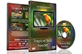 Relaxing Birds DVD - Tropical Bird Feeder - Cute and Colourful Birds with Natural Bird Sounds Videos for Your Pets and Kids