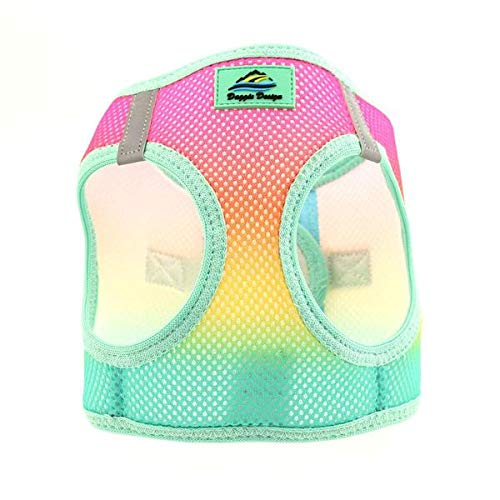 DOGGIE DESIGN American River Choke-Free Dog Harness Beach Party Ombre (X-Small)
